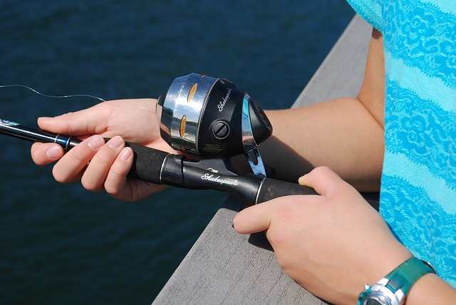 Baitcasting Reels Review