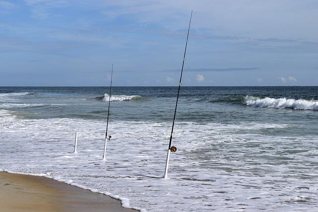 Best Surf Casting Reel