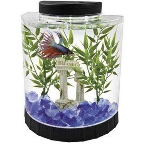5 awesome things you can learn from best betta fish tanks for Betta fish tanks amazon