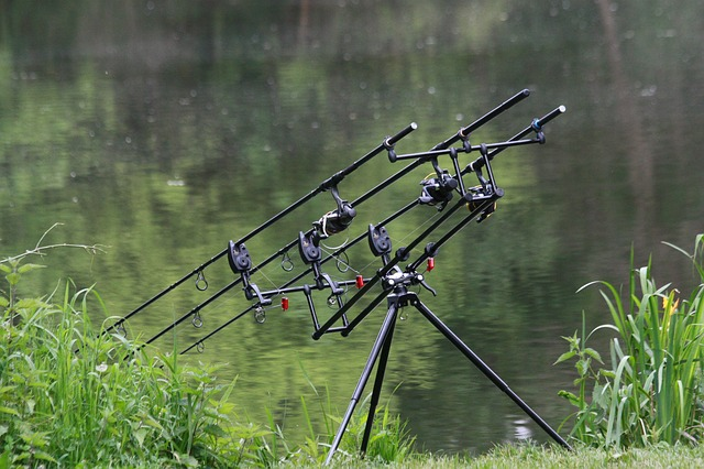 Best Spinning Rods For The Money