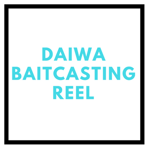 Daiwa Baitcasting Reel review